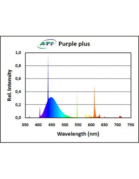 ATI Purple Plus