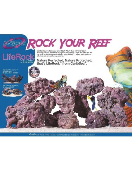 Carib Sea Life Rock