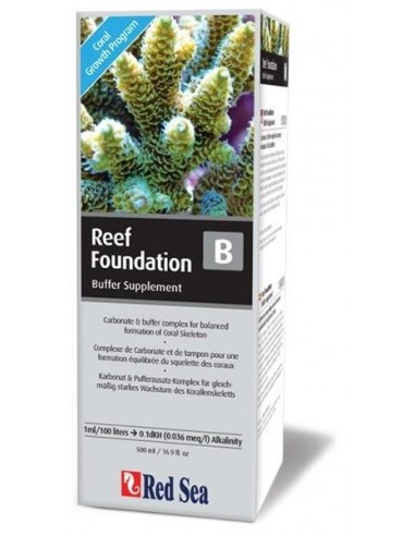 Red Sea Reef Foundation B