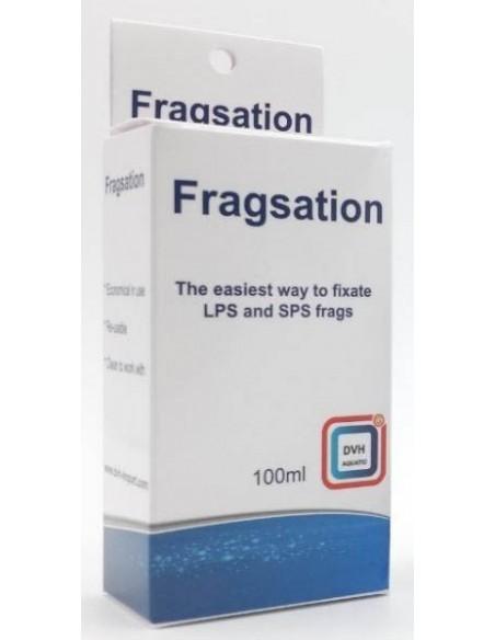 Fragsation