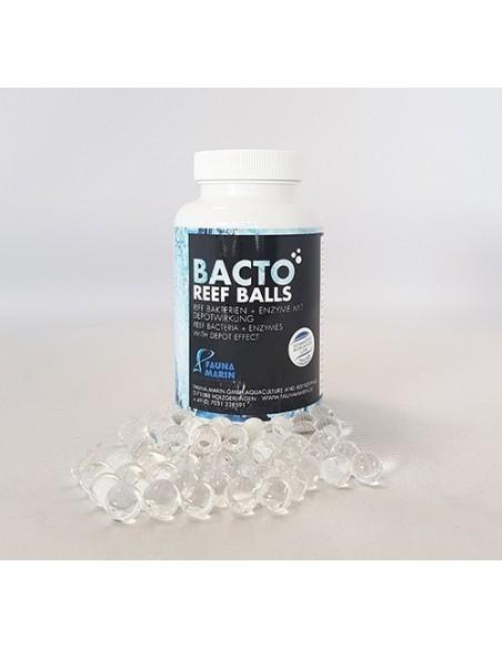 FM Bacto Reef Balls