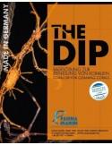 FM The Dip