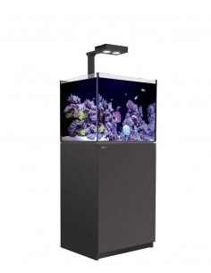 Red Sea Reefer Deluxe 170