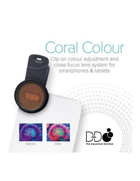 D&D Coral Color Lens