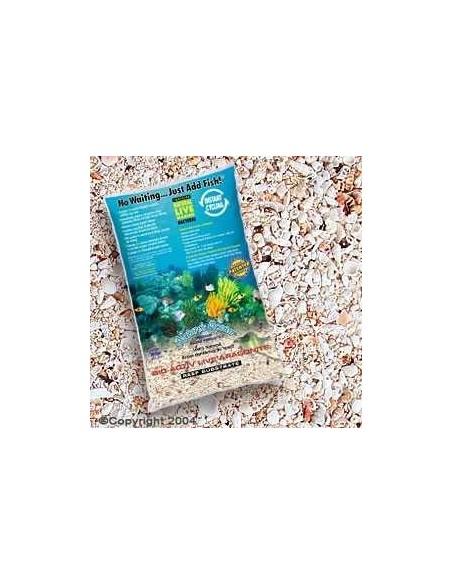 Aragonite Reef Substrate levande sand